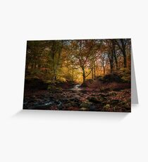 Autumn comes to Tockholes Greeting Card