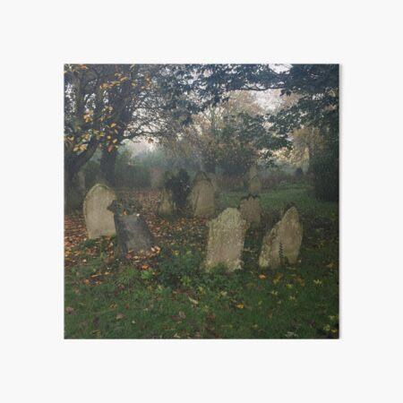 Misty graveyard Art Board Print
