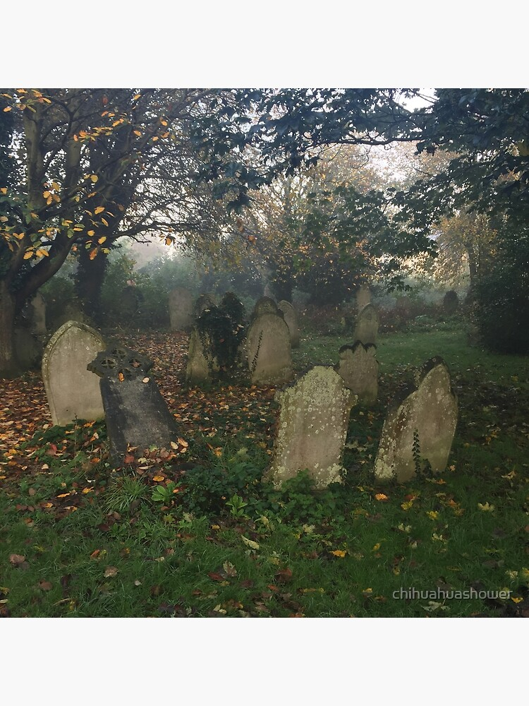 Misty graveyard by chihuahuashower