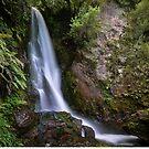 Wairere Falls by Linda Cutche