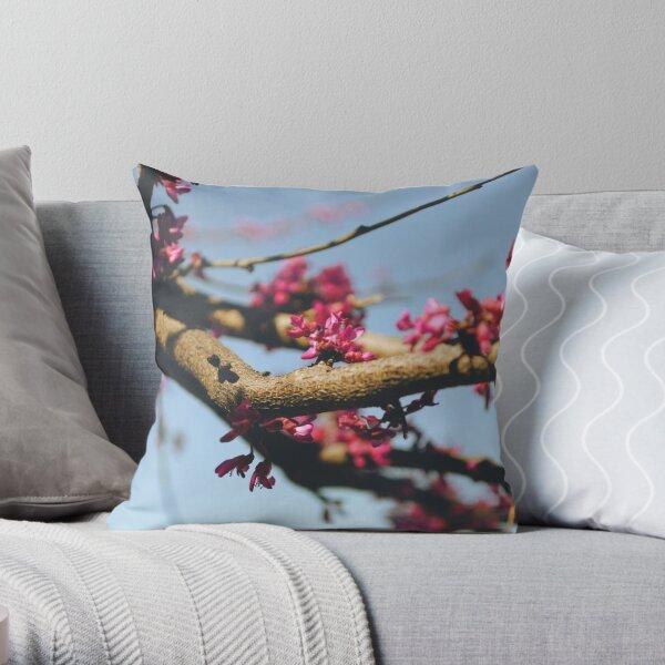 Eastern Redbud Throw Pillow
