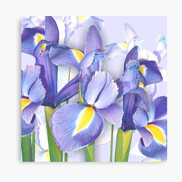 Springtime Irises Canvas Print