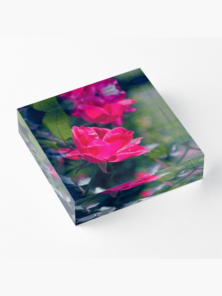 Alternate view of Roses and Leaves Acrylic Block
