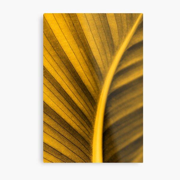 Golden Leaf Metal Print