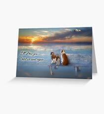 Pet Loss Sympathy/Rainbow Bridge Greeting Card
