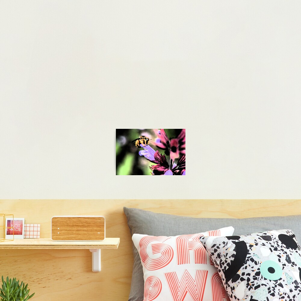 Bee and Flower Photographic Print