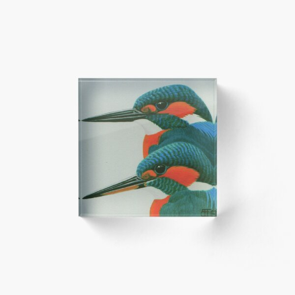 Kingfisher pair Acrylic Block