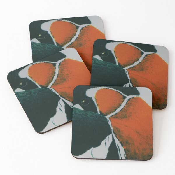 Red-breasted goose Coasters (Set of 4)