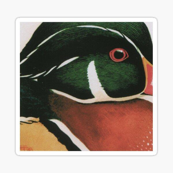 Wood Duck Sticker