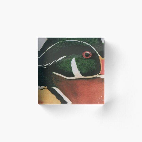Wood Duck Acrylic Block