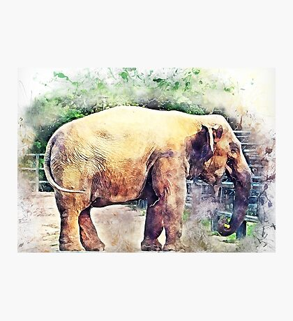 Elephant art Photographic Print