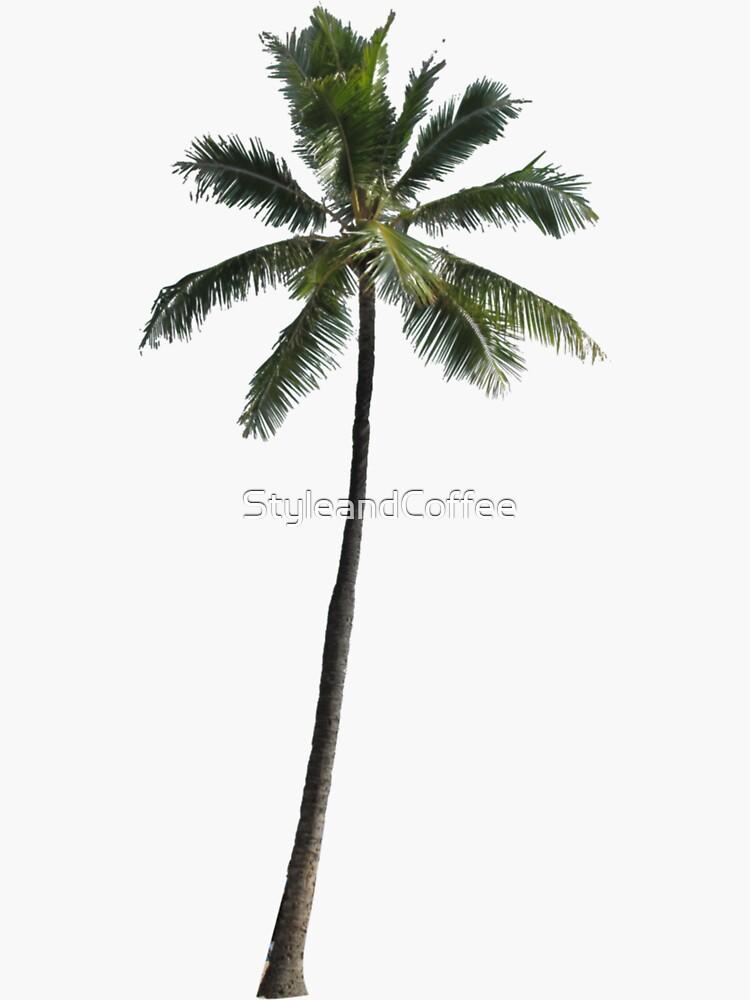 Palme - Kuba von StyleandCoffee