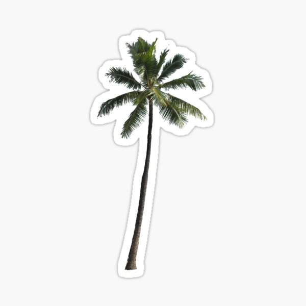 Palm Tree - Cuba Sticker