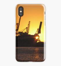 Cranes at Sunset iPhone Case