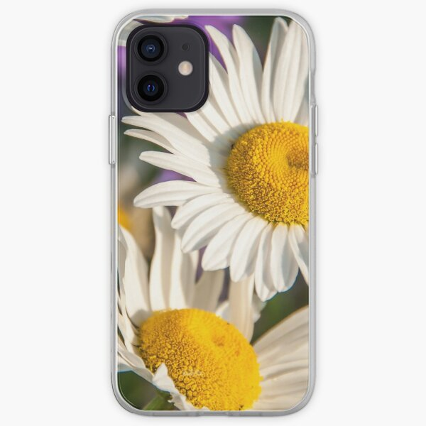 Fields of daisies iPhone Soft Case