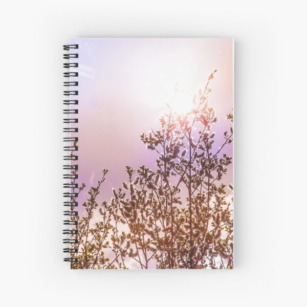 Buds and sunset, colorful sky (nature photo) Spiral Notebook