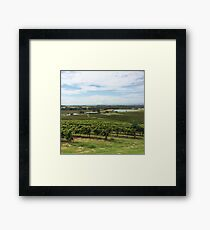 Winery Framed Print