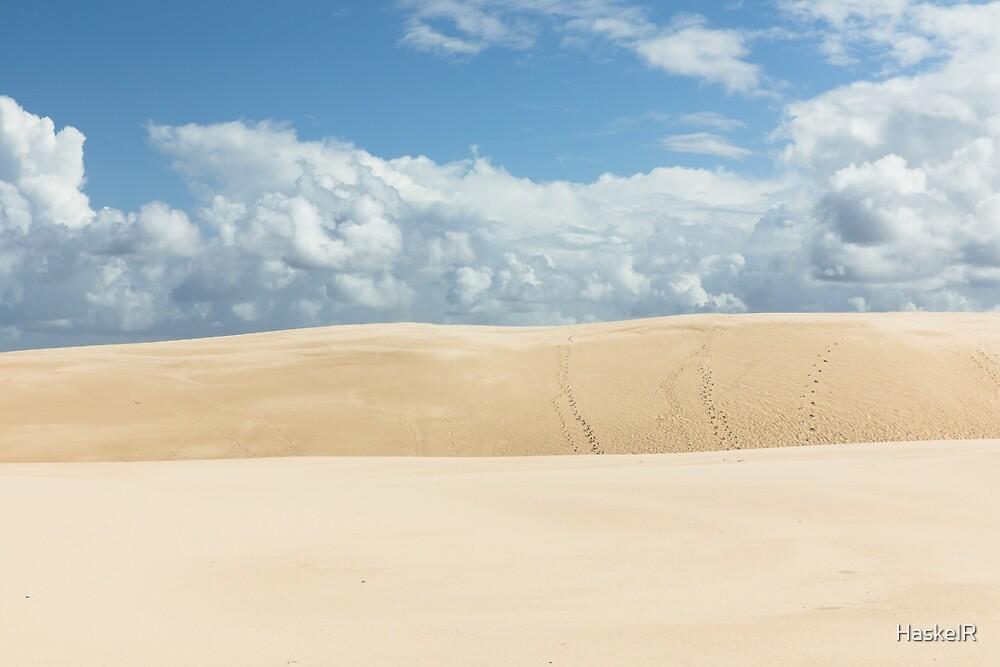 Hawks Nest Dunes by HaskelR