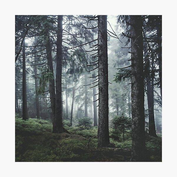 Path Vibes Photographic Print