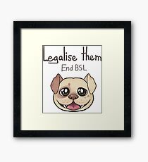 End BSL Framed Print