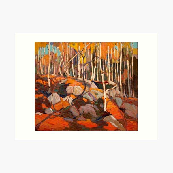 Tom Thomson - The Birch Grove, Autumn - 1915-16 Art Print