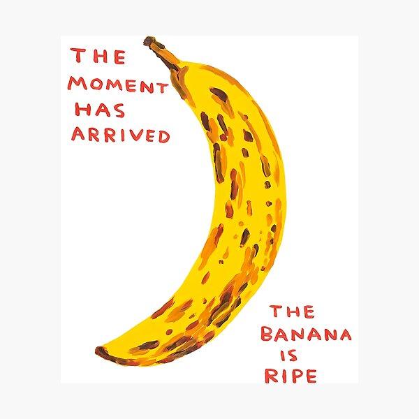 The Banana Davids Is Ripe Photographic Print