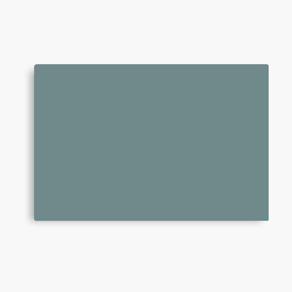 El color sólido azul-verde tropical fresco se empareja con Benjamin Moore Aegean Teal 2136-40 2021 Color del año Lienzo