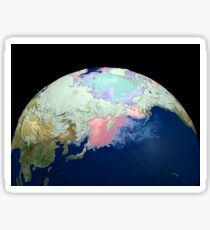 Planet Earth showing snow, sea, ice. Sticker