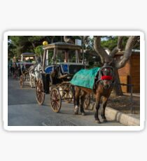 Row of horse with carriages in Mdina, Malta Sticker