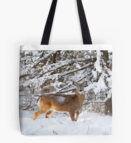 Young White-tailed Buck in snow Tote Bag
