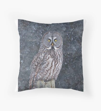 Great Grey Owl in Snow Throw Pillow