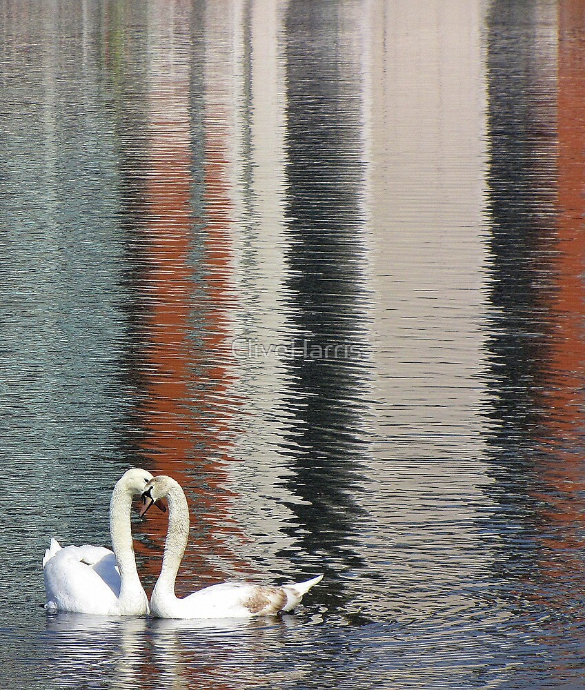 Reflecting on their love by CliveHarris