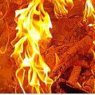 Dance Fire Woman by Rusty Gentry