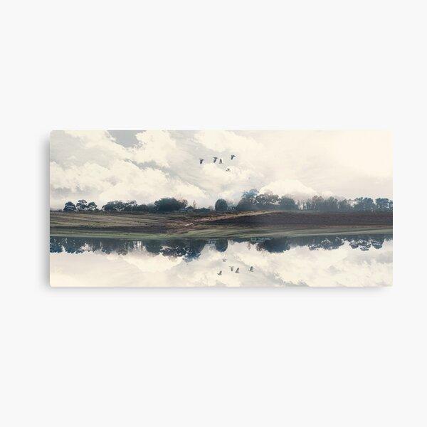 Reflected Landscape  Metal Print
