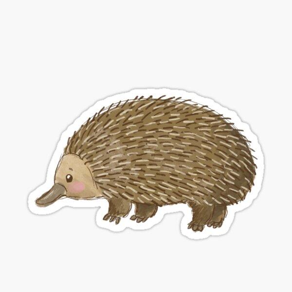 Aussie Animals: Echidna Sticker