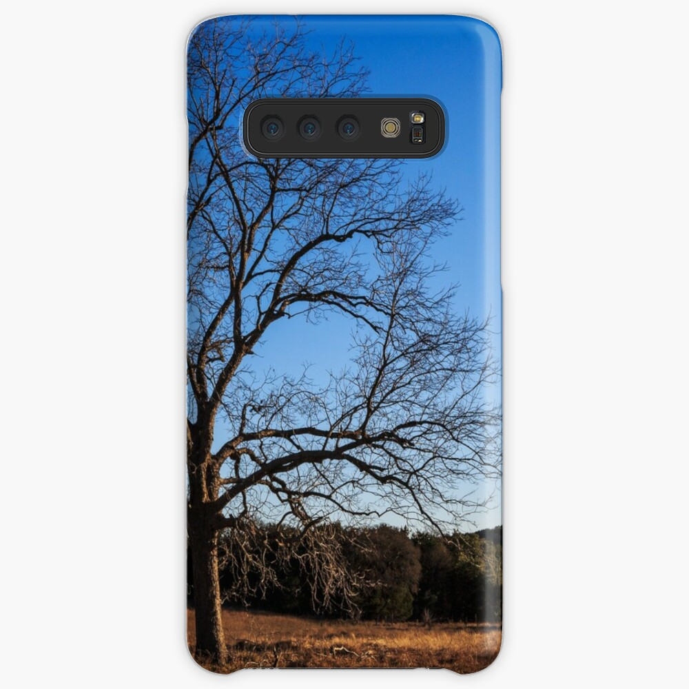 Old Pecan tree Case & Skin for Samsung Galaxy