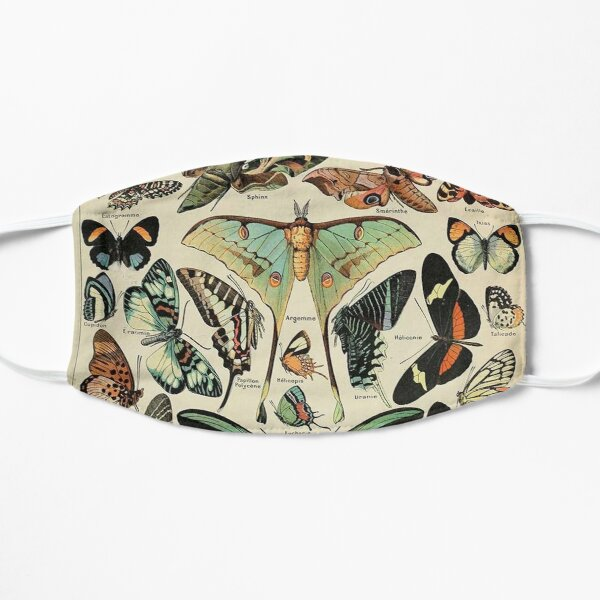 vintage butterflies and moths Mask