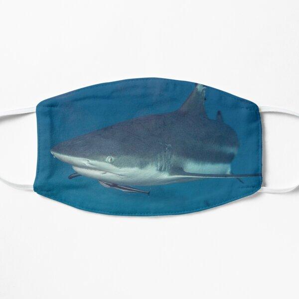 Blacktip Reef Shark Flat Mask