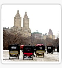 Bicycle carriages in Central Park, New York City Sticker