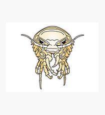 scarey deep sea crustacean Photographic Print