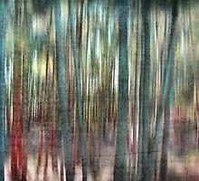 Mystical Woods by Annette Blattman