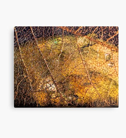Roots and Veins Metal Print