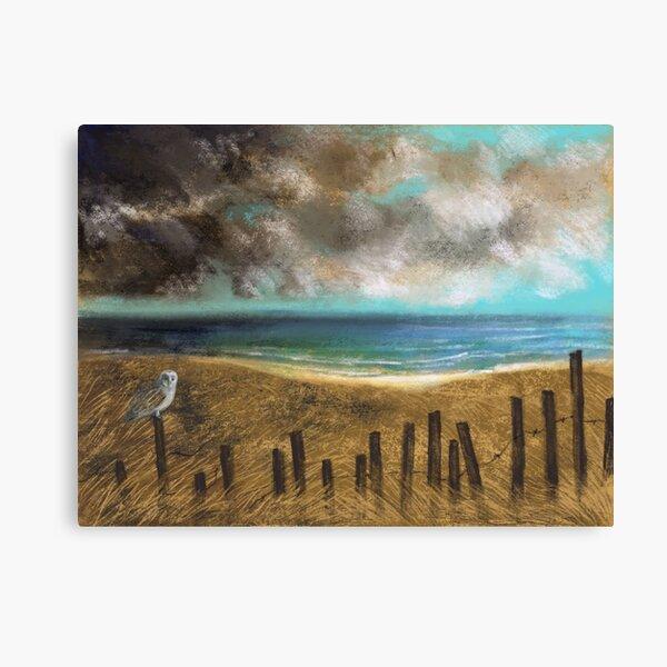 Barn Owl on a Fence by the Sea Canvas Print