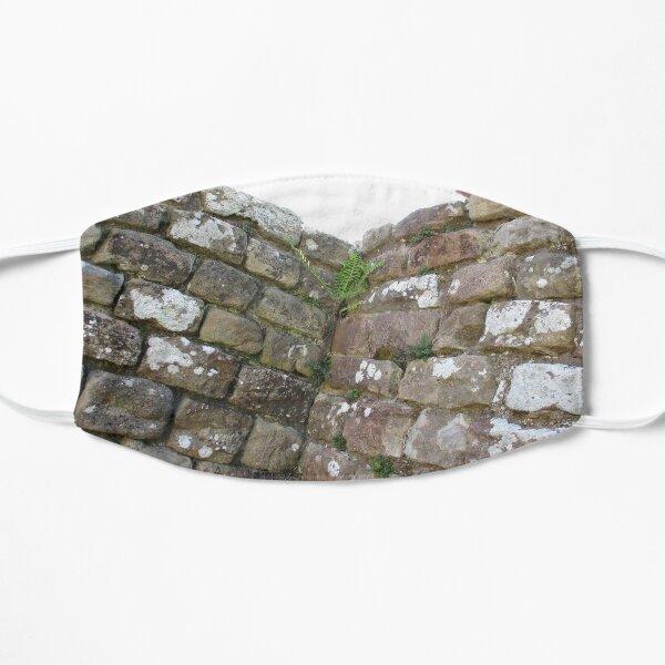 Merch #102 -- The Corner Plants (Hadrian's Wall) Mask