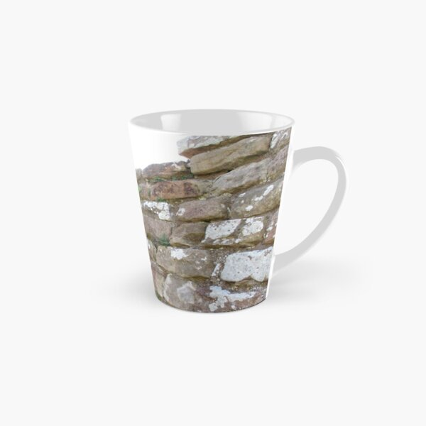 Merch #102 -- The Corner Plants (Hadrian's Wall) Tall Mug