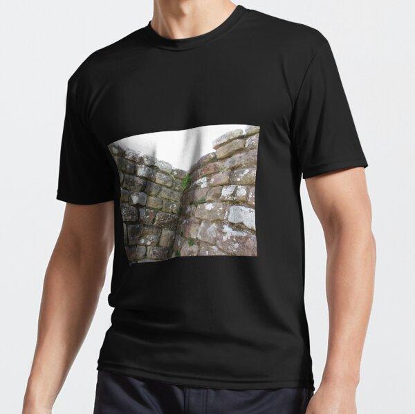 Merch #102 -- The Corner Plants (Hadrian's Wall) Active T-Shirt