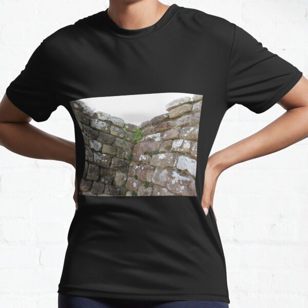 Merch #102 -- The Corner Plants (Hadrian's Wall) Active T-Shirt