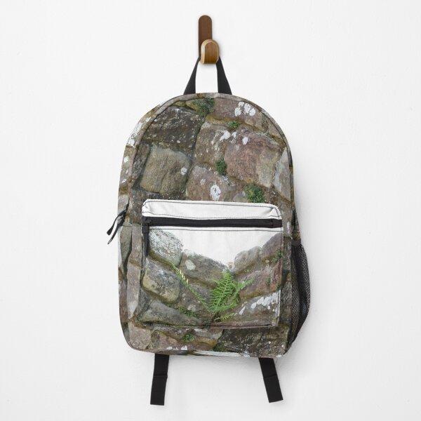 Merch #102 -- The Corner Plants (Hadrian's Wall) Backpack