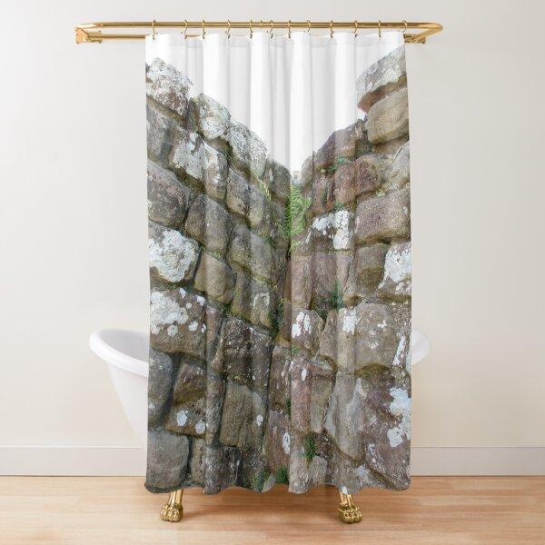 Merch #102 -- The Corner Plants (Hadrian's Wall) Shower Curtain