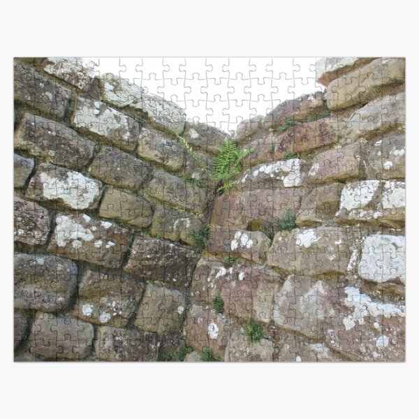 Merch #102 -- The Corner Plants (Hadrian's Wall) Jigsaw Puzzle